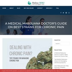 Medical Marijuana Doctor Suggests Strains for Chronic Pain