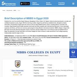 MBBS in Egypt fees