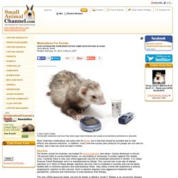 Medications For Ferrets