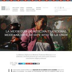 La mejor guía de medicina tradicional mexicana está en este sitio de la UNAM -Más de MX