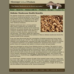Health and Medicinal Information about Shiitake Mushrooms