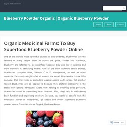 Best Organic Blueberry Powder For Sale Online