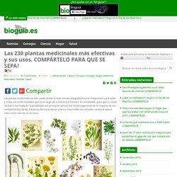 Las 230 plantas medicinales más efectivas y sus usos. COMPÁRTELO PARA QUE SE SEPA! - Guia natural y ecológicaGuia natural y ecológica