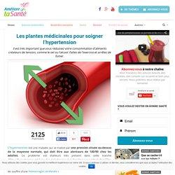 Les plantes médicinales pour soigner l'hypertension