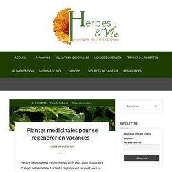 Plantes médicinales pour se régénérer en vacances ! - Herbes et Vie