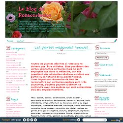 Les plantes médicinales toxiques - Le blog de Rosacorleone