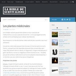 Les plantes médicinales - La Bible du Survivalisme