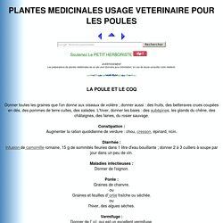 PLANTES MEDICINALES USAGE VETERINAIRE POUR LA POULE ET LE COQ