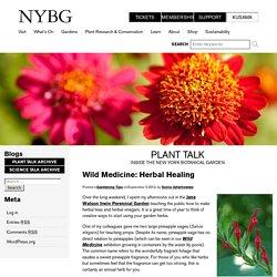 Wild Medicine: Herbal Healing - Plant Talk