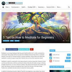 5 Tips on How to Meditate for Beginners