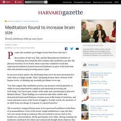 Meditation found to increase brain size | Harvard Gazette