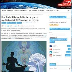 Une étude d'Harvard dévoile ce que la méditation fait littéralement au cerveau
