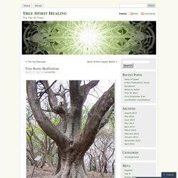 Tree Roots Meditation
