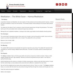 Meditation - The White Swan - Hamsa Meditation - Stress Anxiety Guide
