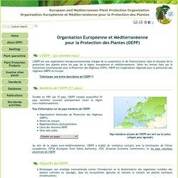 European and Mediterranean Plant Protection Organization (EPPO)