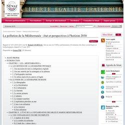 SENAT 21/06/11 La pollution de la Méditerranée : état et perspectives à l'horizon 2030
