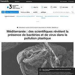 FRANCE 3 11/08/19 Méditerranée : des scientifiques révèlent la présence de bactéries et de virus dans la pollution plastique