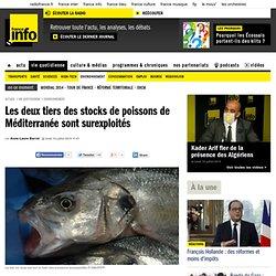 Les deux tiers des stocks de poissons de Méditerranée sont surexploités