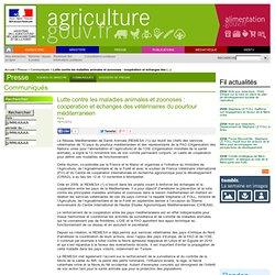 MAAF 15/11/12 Lutte contre les maladies animales et zoonoses : coopération et échanges des vétérinaires du pourtour méditerranée