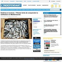 L INDEPENDANT 20/11/14 Sardines et anchois : l'Ifremer tente de comprendre la raréfaction en Méditerrannée