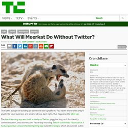 What Will Meerkat Do Without Twitter?