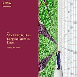 Plenty/Tigris (USA) : agriculture verticale