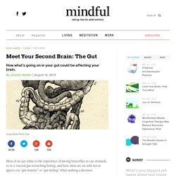 Meet Your Second Brain: The Gut