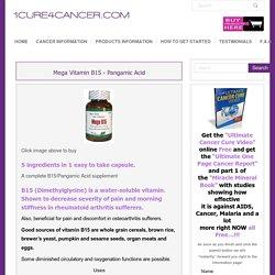 Mega Vitamin B15 - Pangamic Acid