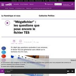"""""""Mégafichier"""" : les questions que pose encore le fichier TES"""