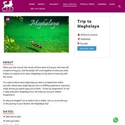 Meghalaya Trip & Tour Packages