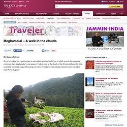 Meghamalai – A walk in the clouds