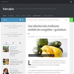 Une sélection des meilleures variétés de courgettes « gustatives » - Karcajou