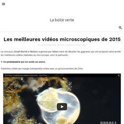 Les meilleures vidéos microscopiques de 2015