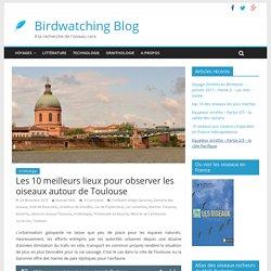 Les 10 meilleurs lieux pour observer les oiseaux autour de Toulouse