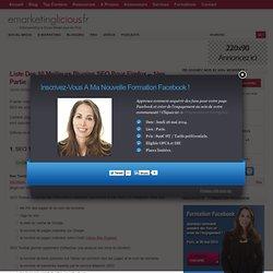 Liste Des 10 Meilleurs Plugins SEO Pour Firefox – 1ère Partie