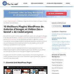 10 Meilleurs Plugins de Galeries d'Images et Vidéos Wordpress