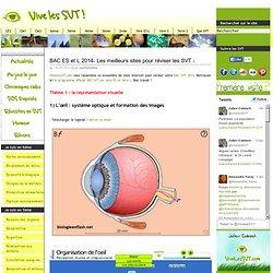 Sites pour réviser les SVT