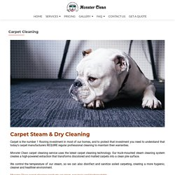 Carpet steam clean