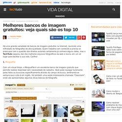 Melhores bancos de imagem gratuitos: veja quais são os top 10
