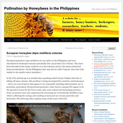Apis mellifera in the PhilippinesPollination by Honeybees in the Philippines
