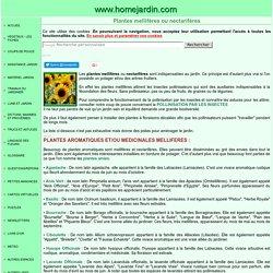 Plantes mellifères ou nectarifères