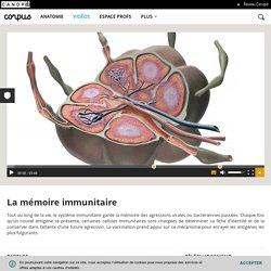 La mémoire immunitaire - Corpus - réseau Canopé