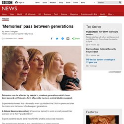 'Memories' pass between generations