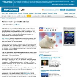 False memories generated in lab mice - life - 22 March 2012