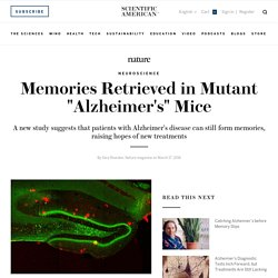 "Memories Retrieved in Mutant ""Alzheimer's"" Mice"