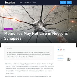 Memories May Not Live in Neurons' Synapses - Futurism