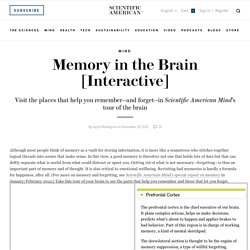 Memory in the Brain [Interactive]