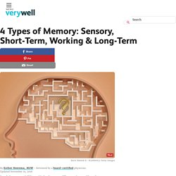 Memory Types: Sensory, Short-Term, Working & Long-Term