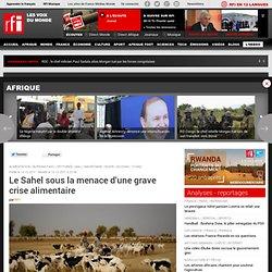 Le Sahel sous la menace d'une grave crise alimentaire - Sahel / Crise alimentaire