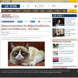 Menaces terroristes: les Belges brouillent les pistes sur Twitter avec... des chats